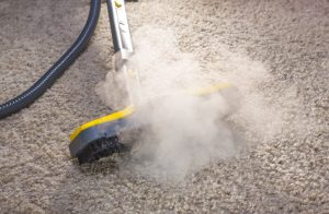 carpet-cleaning-dust-mites